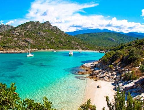 DMC Corsica