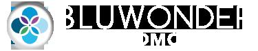 Bluwonder Logo